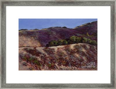 Oaks On A Hillside Framed Print