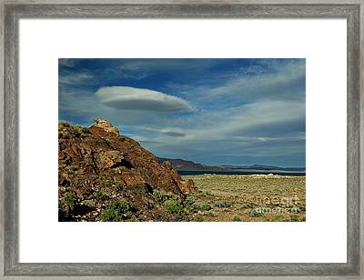 Oasis In The Desert Framed Print by Benanne Stiens