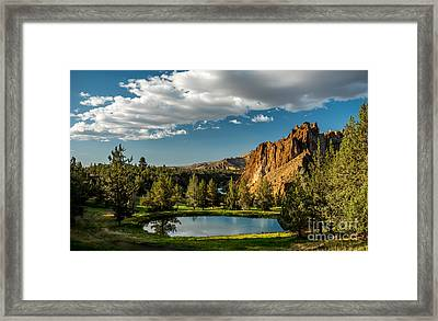 Oasis In The Desert Framed Print