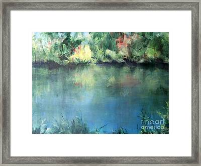 Oasis Framed Print by Mary Lynne Powers