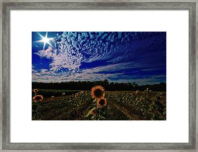 Framed Print featuring the photograph Oasis Of Siimplicity  by John Harding