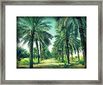 Oasis Framed Print by Peter Waters