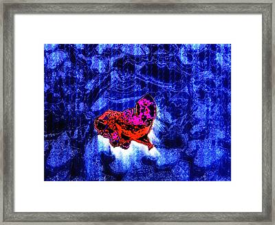 Object Of Curiosity Framed Print