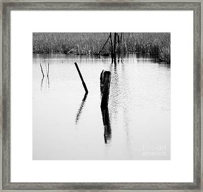 Objects In River Framed Print