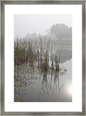 Obscurity 1 Framed Print