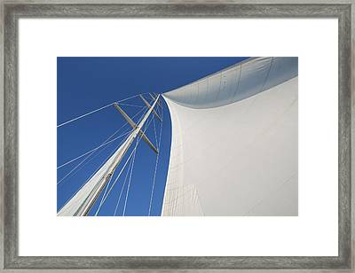 Obsession Sails 3 Framed Print by Scott Campbell