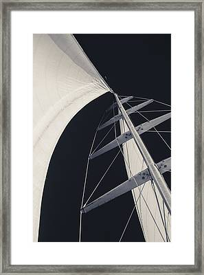 Obsession Sails 5 Black And White Framed Print by Scott Campbell