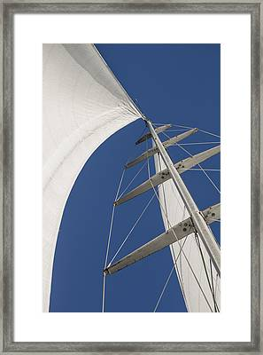 Obsession Sails 5 Framed Print by Scott Campbell