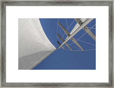 Obsession Sails 8 Framed Print by Scott Campbell