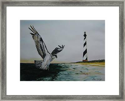 O.b.x. Framed Print by Stan Tenney