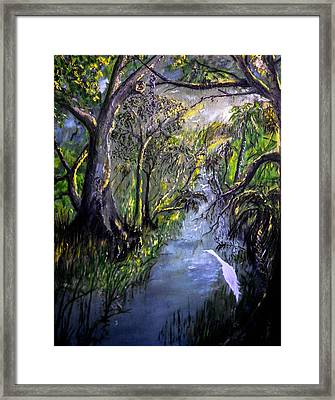 Ocala Creek Framed Print