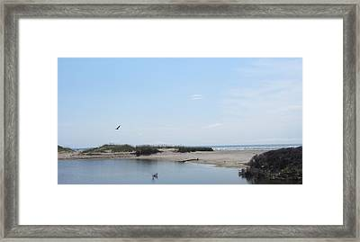 Framed Print featuring the photograph Ocean And Sound by Cathy Lindsey