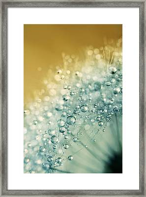 Framed Print featuring the photograph Ocean Blue Dandy Sparkles by Sharon Johnstone