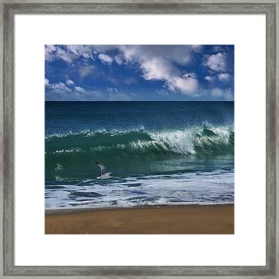 Ocean Blue Morning Framed Print by Laura Fasulo