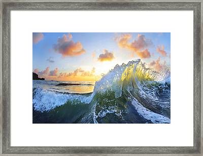 Ocean Bouquet Framed Print by Sean Davey