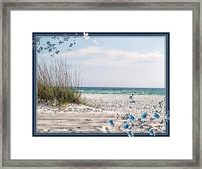 Ocean Breeze Framed Print by Athala Carole Bruckner