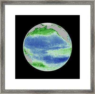 Ocean Chlorophyll Concentrations Framed Print by Nasa/gsfc Ocean Ecology Lab