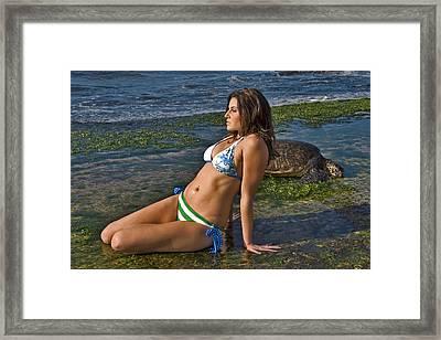 Ocean Friends Framed Print by Don Ewing
