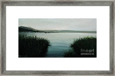Ocean Grass Framed Print by Paul Walsh