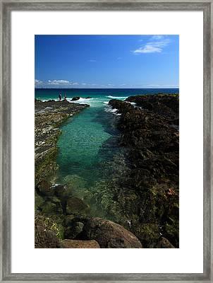 Ocean Rockpool Framed Print by Noel Elliot