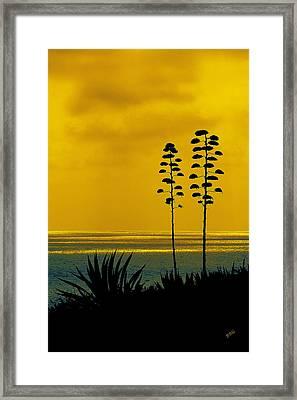 Ocean Sunset With Agave Silhouette Framed Print by Ben and Raisa Gertsberg