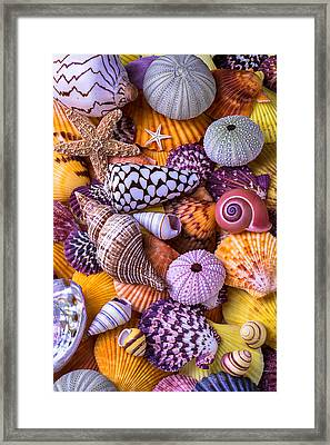 Ocean Treasures Framed Print