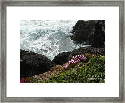 Ocean Wildflowers-2 Framed Print by Avis  Noelle