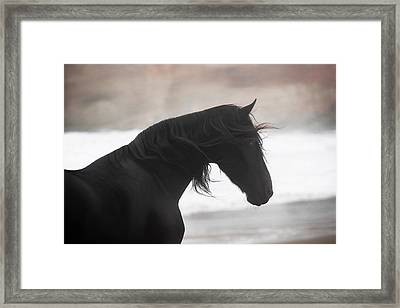 Ocean Winds Framed Print by Pamela Hagedoorn