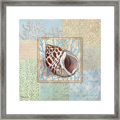 Oceanic Shell Collage I Framed Print