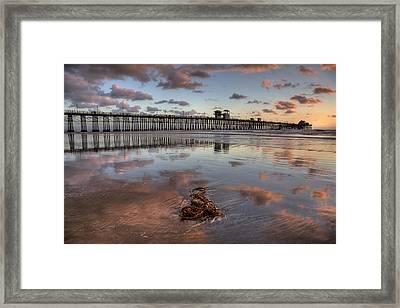 Oceanside Pier Seaweed Framed Print by Peter Tellone