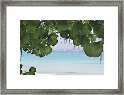 Ocen View Framed Print