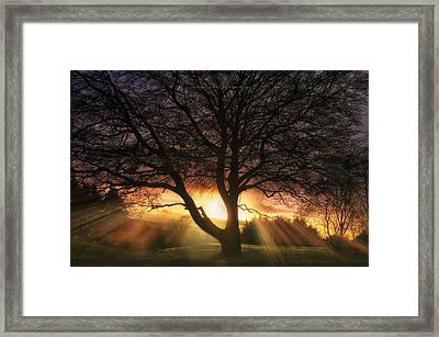 Ochill  Framed Print
