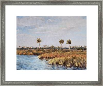 Ochlockonee River Palms Framed Print