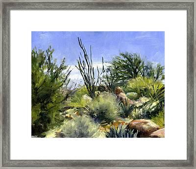 Ocotillo And Scrub Brush Framed Print by Stacy Vosberg