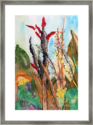Ocotillo Collage Framed Print