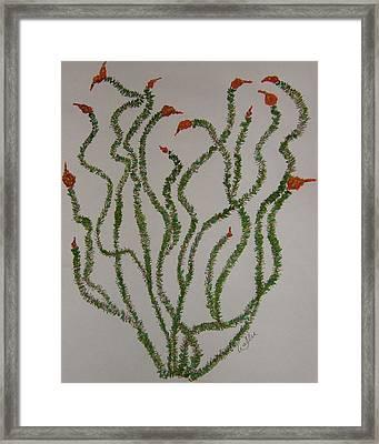 Ocotillo Dance Framed Print by Marcia Weller-Wenbert