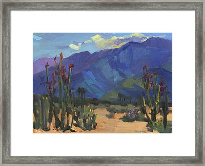 Ocotillos At Smoke Tree Ranch Framed Print