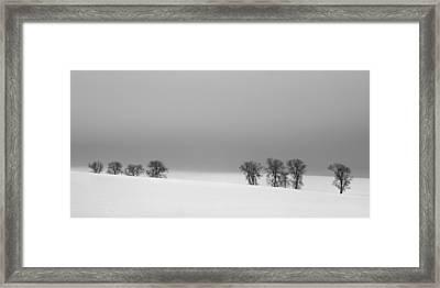 Octet Framed Print by Jaromir Hron