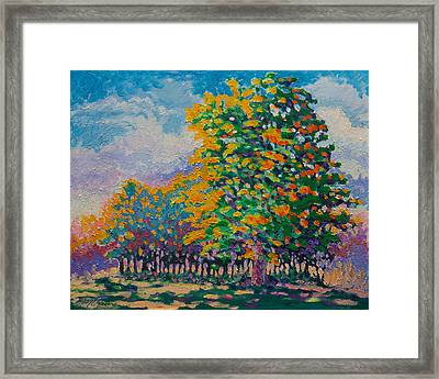 October 17th Framed Print