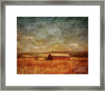October Afternoon Framed Print by Lois Bryan