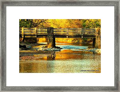October At Robin Hood Dell Framed Print