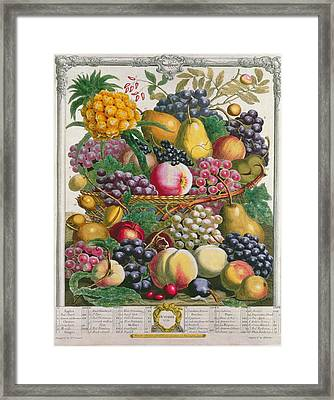 October, From Twelve Months Of Fruits, By Robert Furber C.1674-1756 Engraved By Henry Fletcher Framed Print by Pieter Casteels