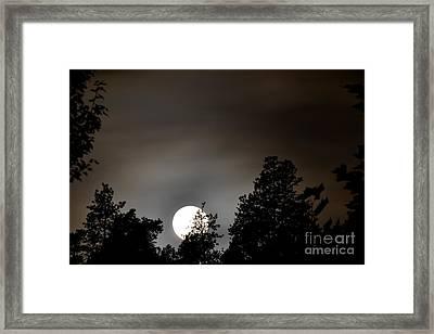 October Full Moon I Framed Print by Phil Dionne