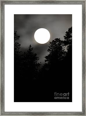 October Full Moon IIi Framed Print by Phil Dionne