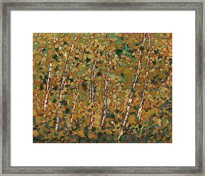 October Gold Framed Print by David Dossett