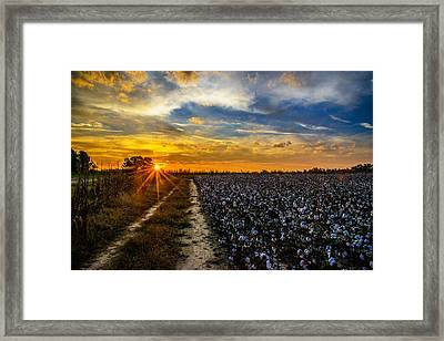 October In North Carolina  Framed Print