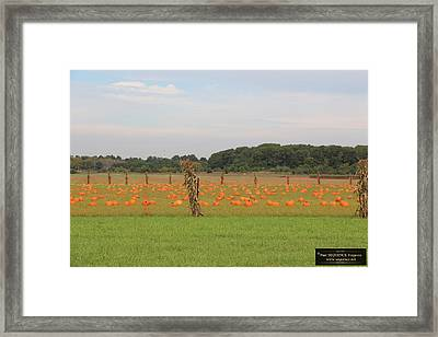 October Is Here 1 Framed Print