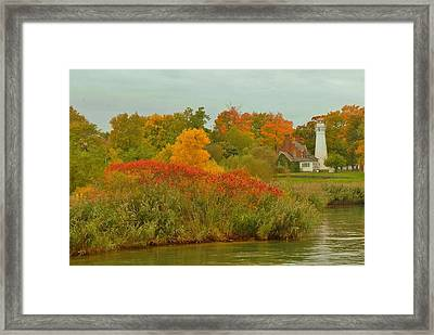 October Light Framed Print