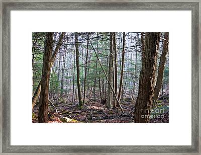 October Mountain  Framed Print