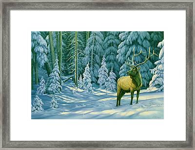 October Snow Framed Print by Paul Krapf